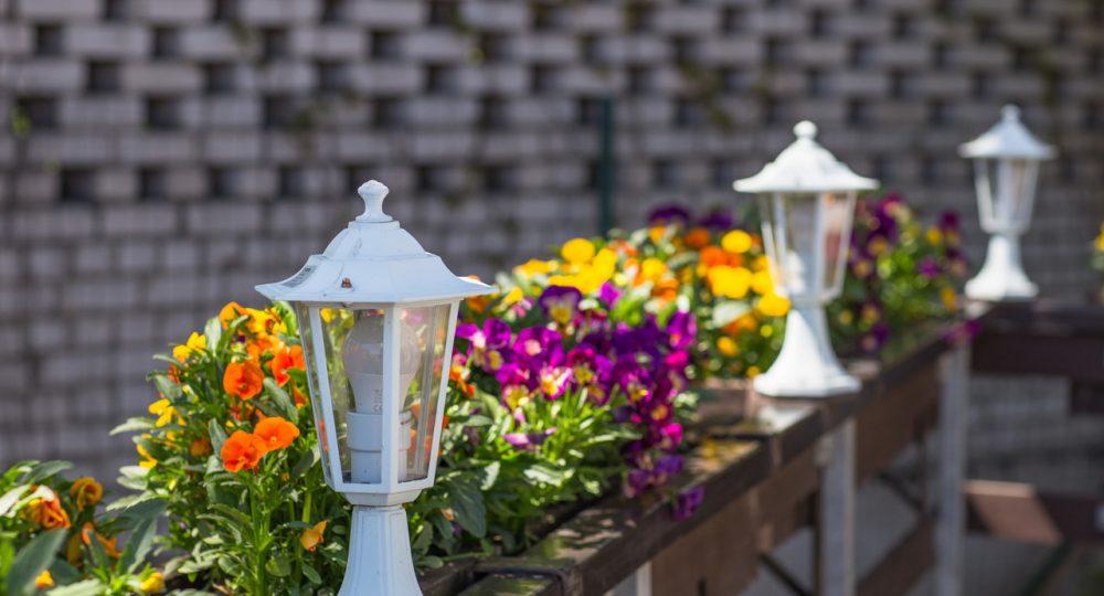 oświetlenie w ogrodzie