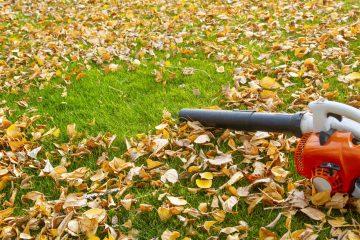 dmuchawa do liści na trawie