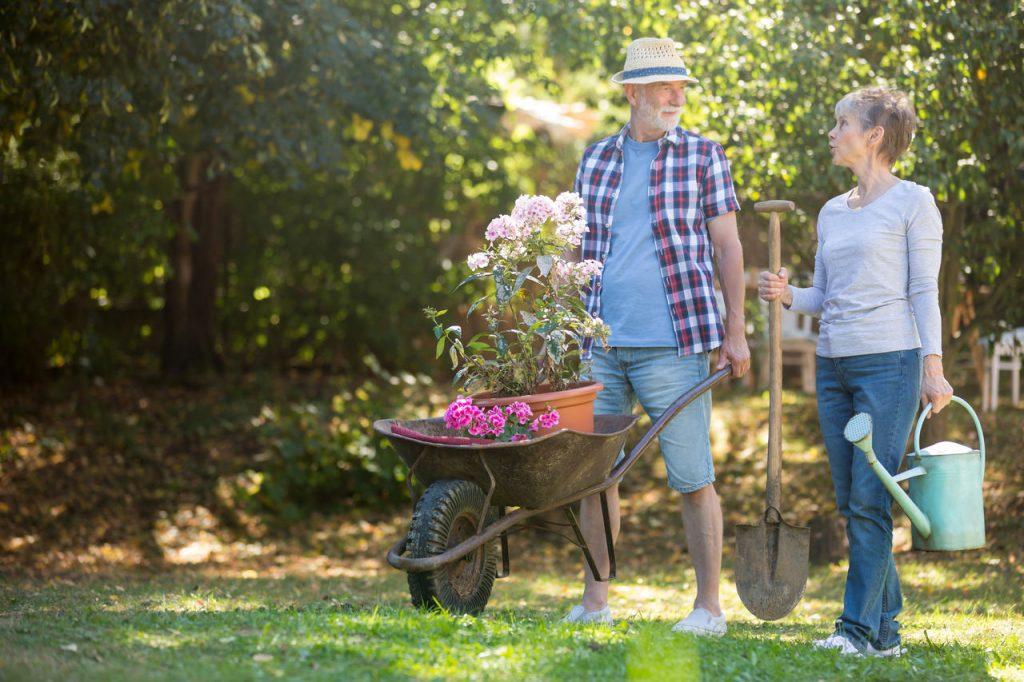 para starszych osób podczas prac w ogrodzie